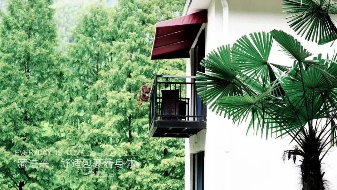 【豪华度假】暑期回归自然!299元抢购隐居山水度假套餐,全行止山景房/隐上树梢山景房搭配吃喝玩乐等你来!