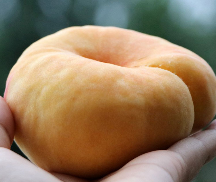 【全国包邮】0售后!顺丰包邮,39.9元抢购蒙阴金蟠桃,净重4.5-5斤(约12个左右)好吃到吮手指的金蟠桃,孙悟空当年就是喜欢吃这款的蟠桃