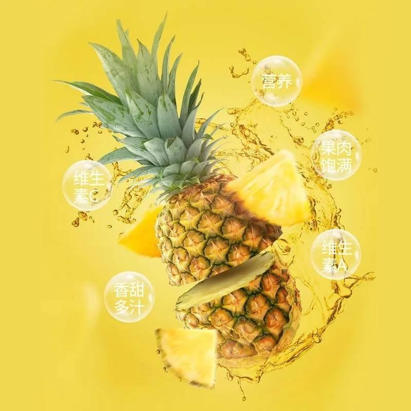 【全国包邮丨湛江徐闻菠萝】现摘现送,36元抢购9斤!还送菠萝刀一把,农民直发,新鲜可口,酸甜多汁~
