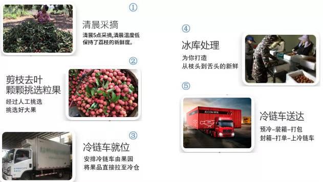 【广东冷链包邮】现摘直发,79元=10斤超甜桂味荔枝!礼盒包装,仅发广东省内区域