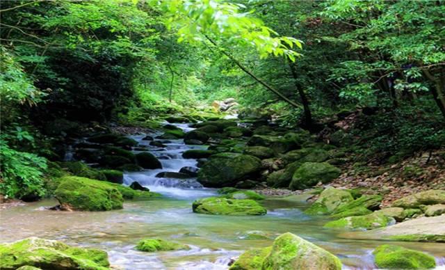 五道峡风景区位于保康县北部,由五个峡谷段构成.