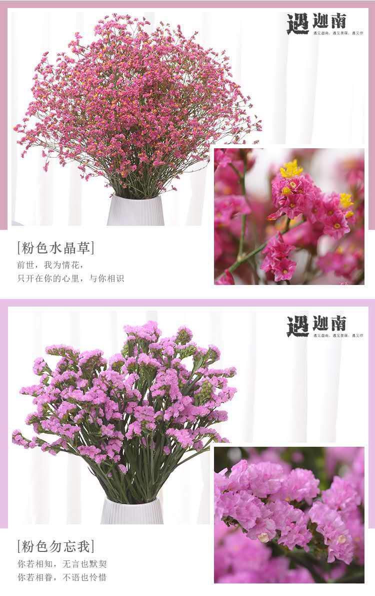 【鲜花】勿忘我+情人草大束29.9元包邮,红色+紫色+粉色+黄色,永恒的爱,值得拥有