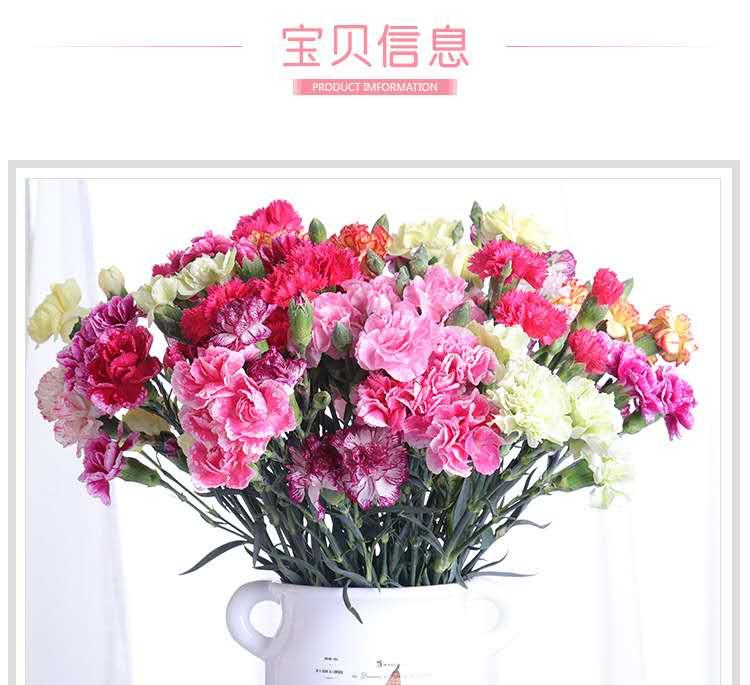 【鲜花】康乃馨20朵39.9元包邮!三月女人节,送妈妈,装饰美家都好看
