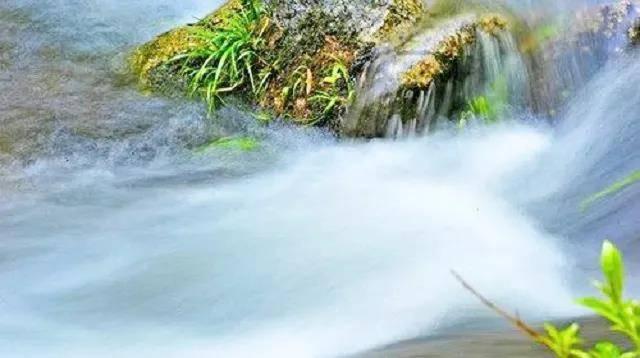 【森林秘境美食套票】¥699,一叶桃园度假酒店·森林秘境!特色早餐+特色晚餐+多功能温矿泉!南粤天然氧吧,回归大自然的理想胜地!