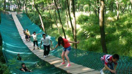 青州仰天山国家森林公园-森林浴场.jpg