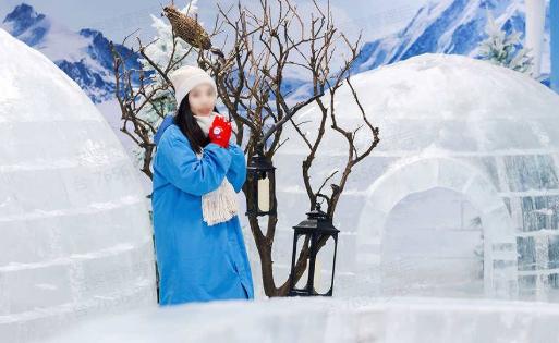 【清明大促35.9】北极小镇冰雪乐园单人特惠票(4.1-5.31,期票,任选1天可用)